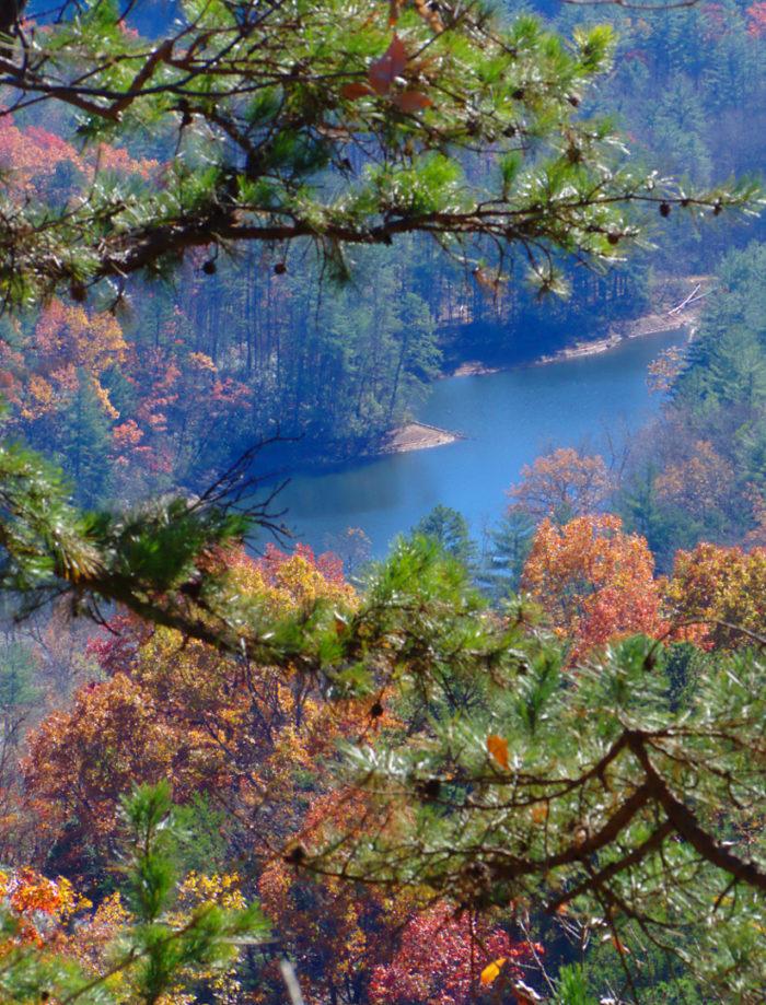 Jones Gap State Park, South Carolina