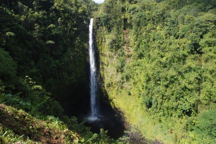 24. Visit the incredible Akaka Falls.