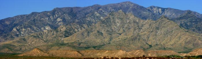 14. Pinaleño Mountains