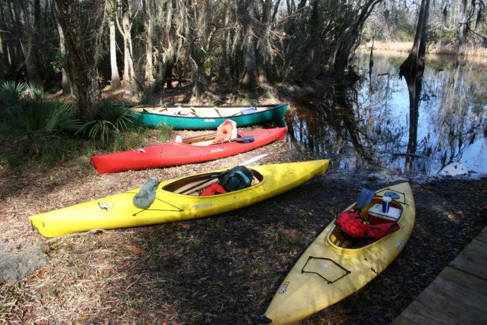 10. Kayak or canoe through Okefenokee Swamp.