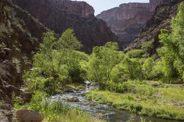1. Aravaipa Canyon