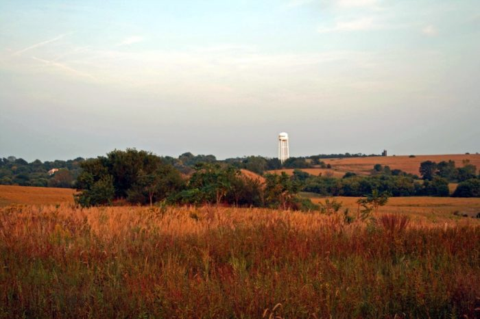 8. A field near dusk as the shadows begin to get longer.