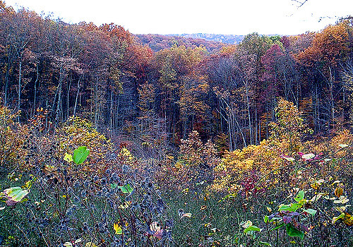 7. Brown County State Park - Nashville