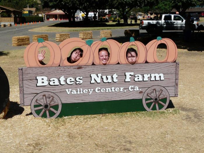 7. Bates Nut Farm -- Valley Center