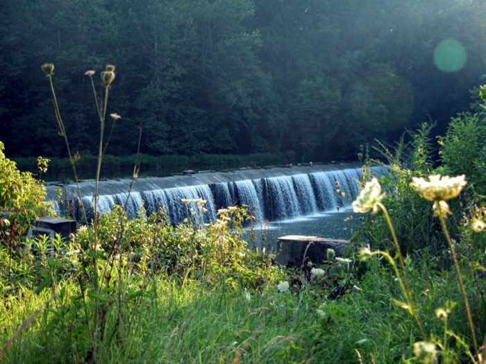 Or check out Daniels Dam, which is a great spot to relax and take in the sights.