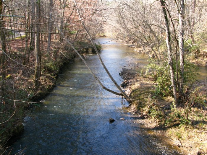 1. With a length of 194 miles, the Cahaba River is Alabama's longest free-flowing river.