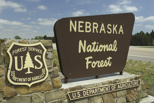 13. We even have a national forest.