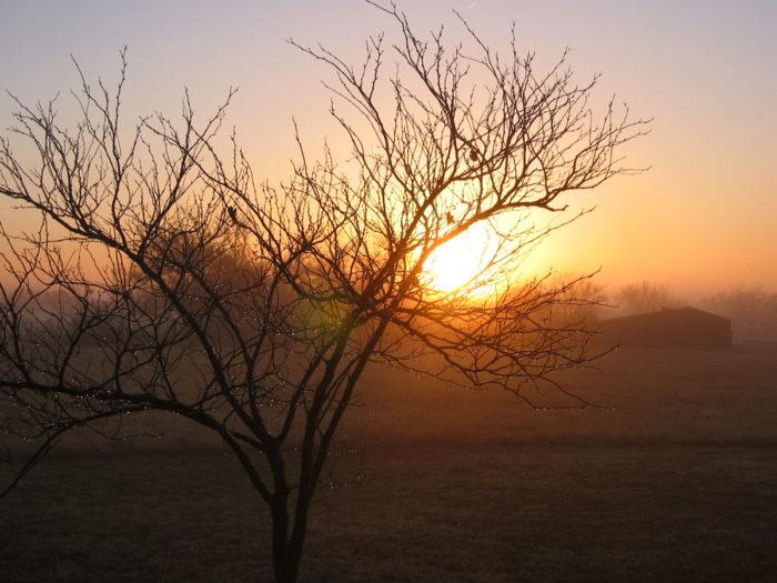 3. Take in a sunrise.