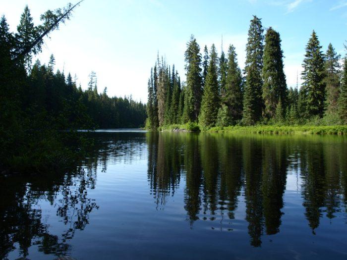 7. Priest Lake