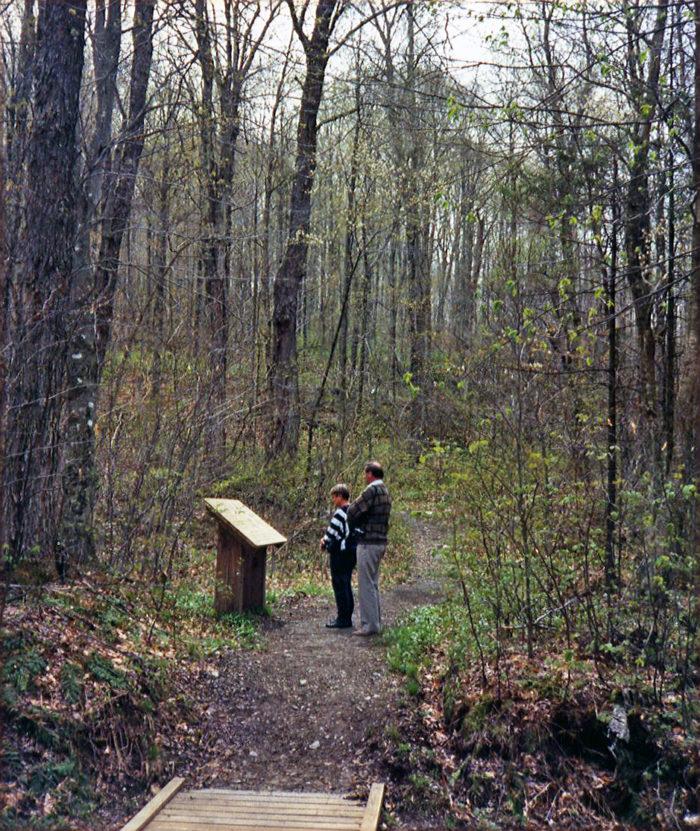 15.  Walk along the Robert Frost trail in Ripton.