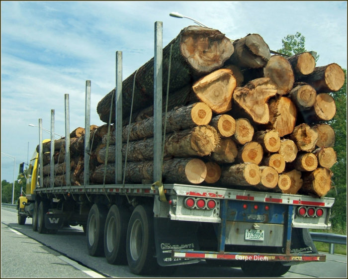 5. You've been in Northern Maine and watched two logging trucks pass each other going the opposite direction.