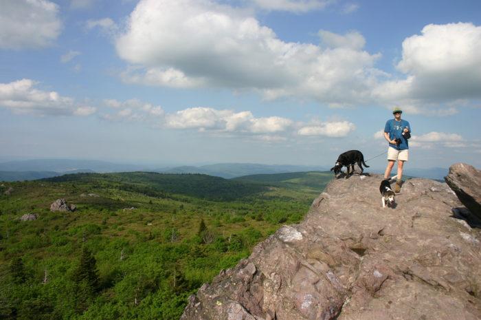 5. Ascend Mt. Rogers, the highest peak in Virginia.