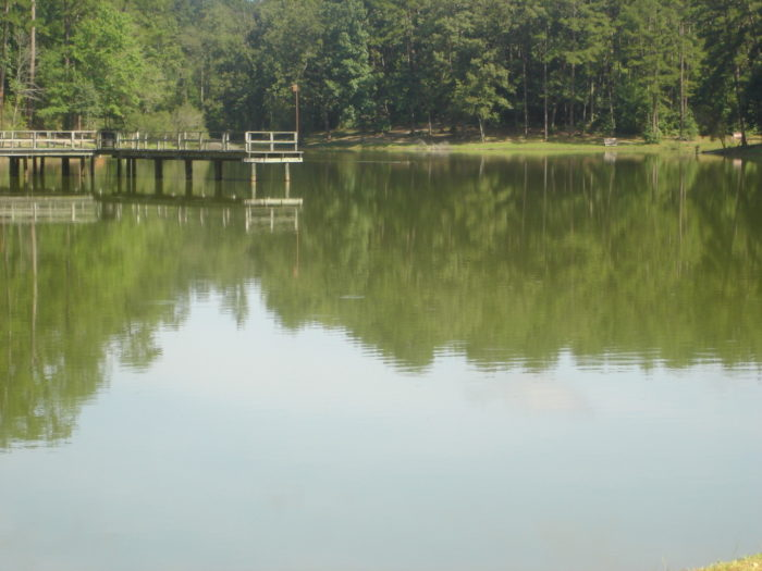 The 15-acre lake is stocked with catfish, channel catfish, bass, and bream, making for great fishing.
