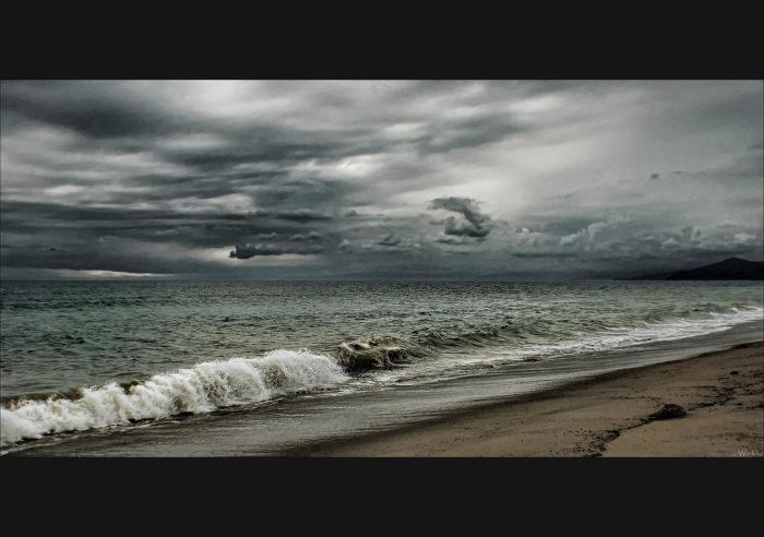 4. The Coast