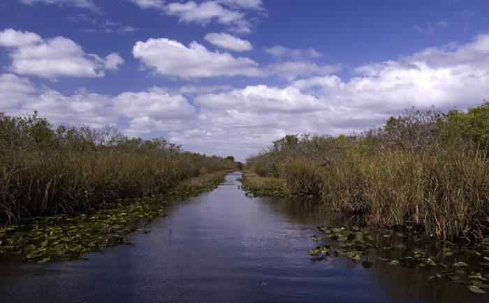 7. Everglades National Park