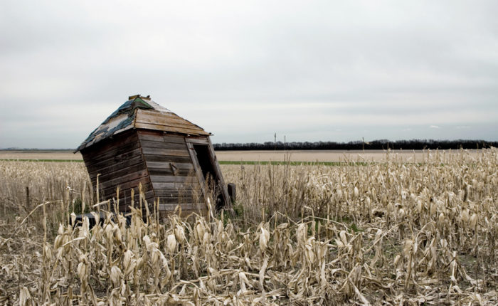 7. A well shed in the middle of a corn field near Absaraka. Not many years are probably left before it falls completely.