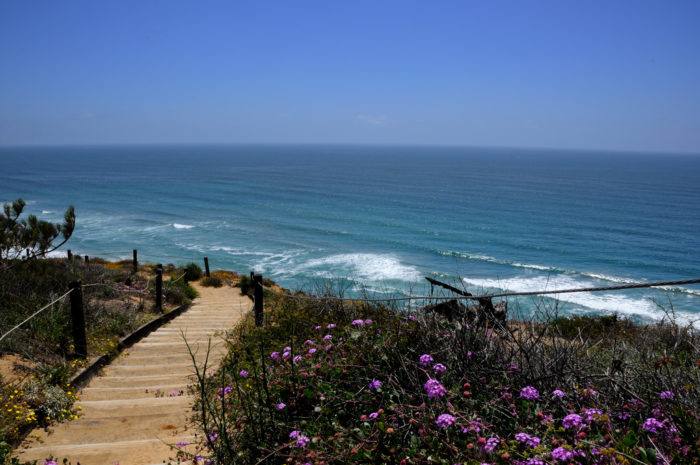 2. This breathtaking view can be experienced along the Guy Fleming Trail at Torrey Pines State Natural Reserve. This is definitely a trail in San Diego that should not be missed.