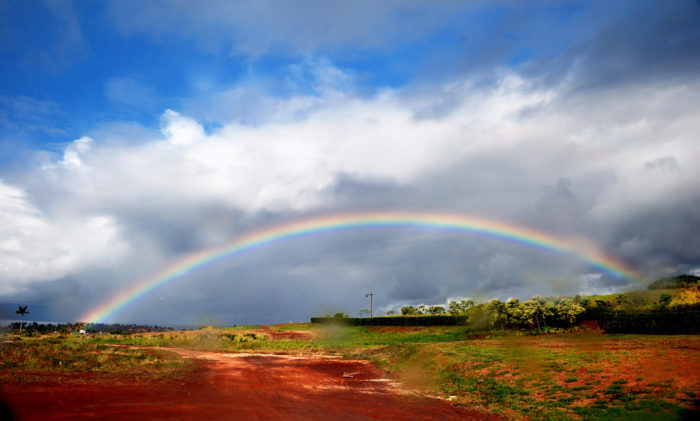 5. Rainbows are almost a daily occurrence.