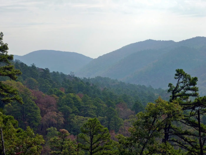 14. Athens-Big Fork Trail (Ouachita National Forest)
