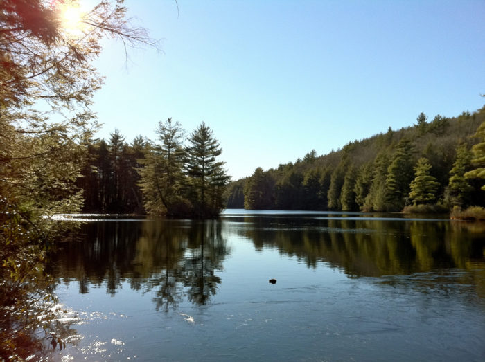 Bigelow Hollow State Park is a gorgeous recreation area!