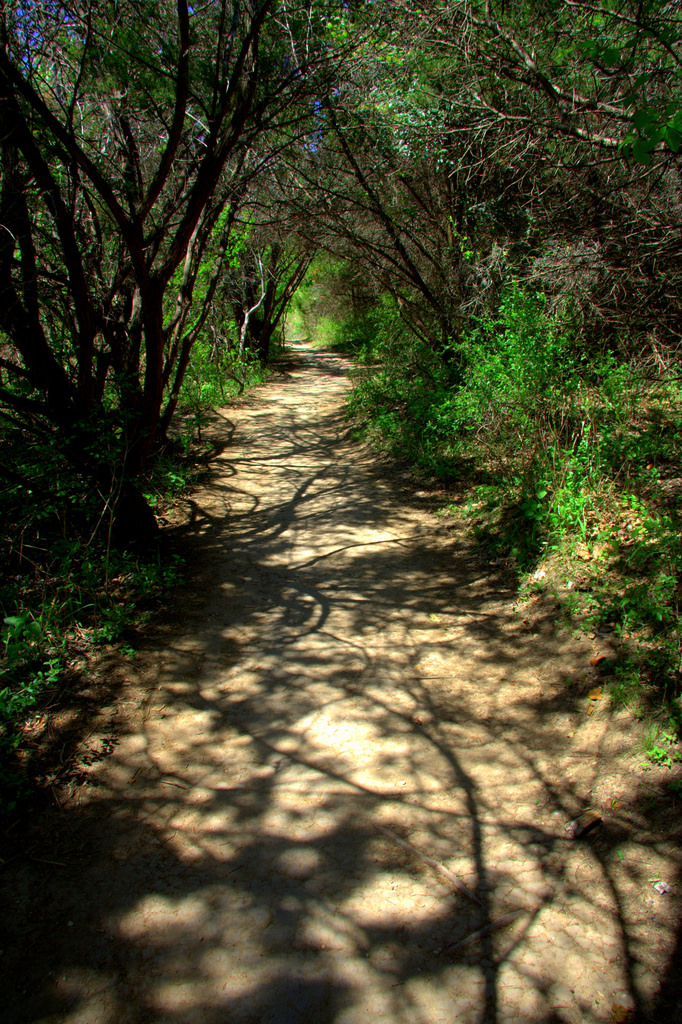 The trail is shady and well-groomed, for a nice, relaxing hike.