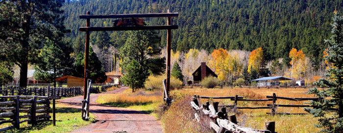 2. Enjoy a stay in a cozy cabin.