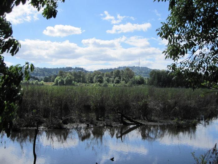 8. Oaks Bottom Wildlife Refuge