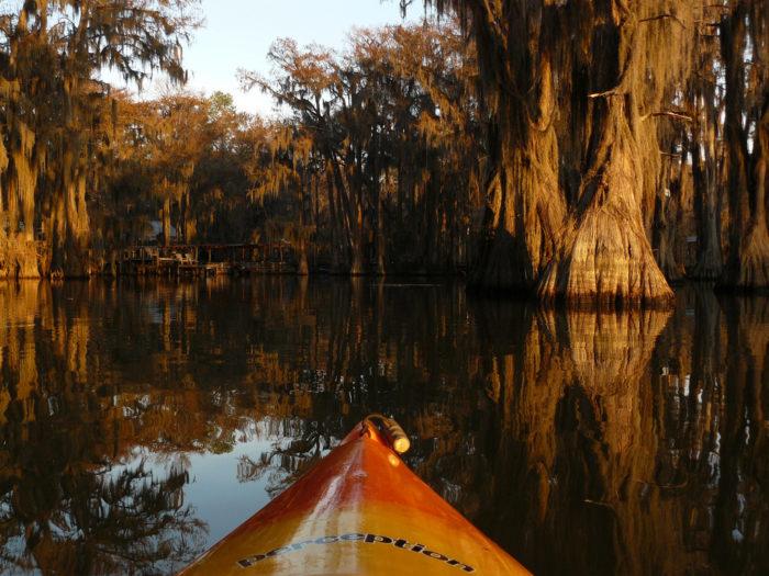 8. Caddo Lake (Uncertain)