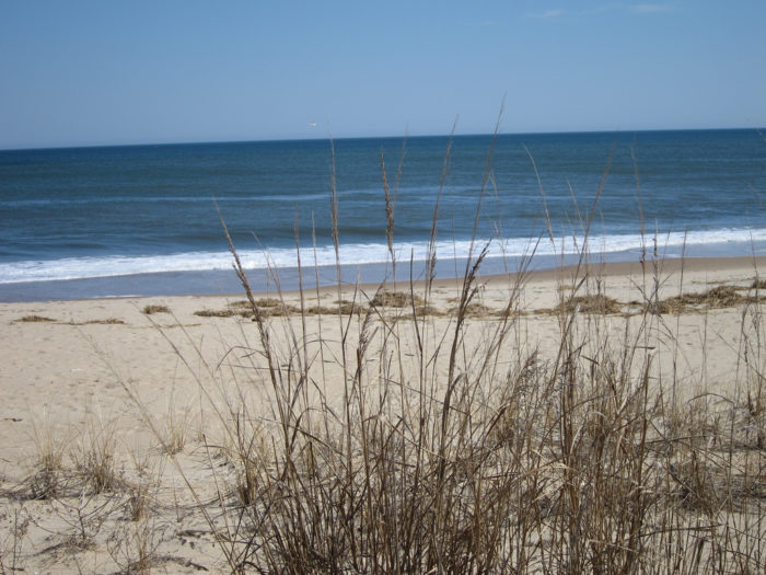 The water at Rehoboth Beach is beautiful, blue, and warm.