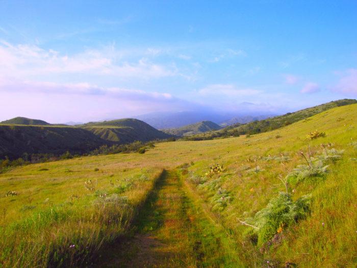 10. Starr Ranch Sanctuary -- Orange County