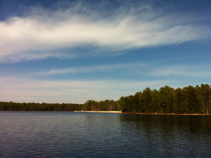 1. Bass River State Forest, Bass River