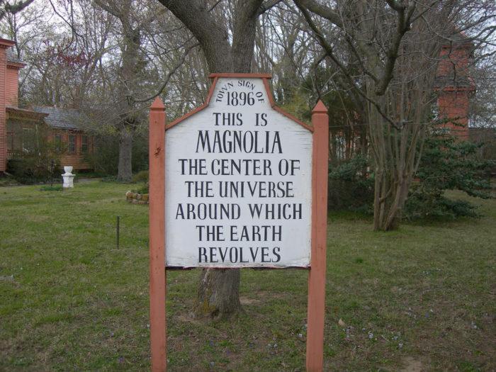 8. Magnolia