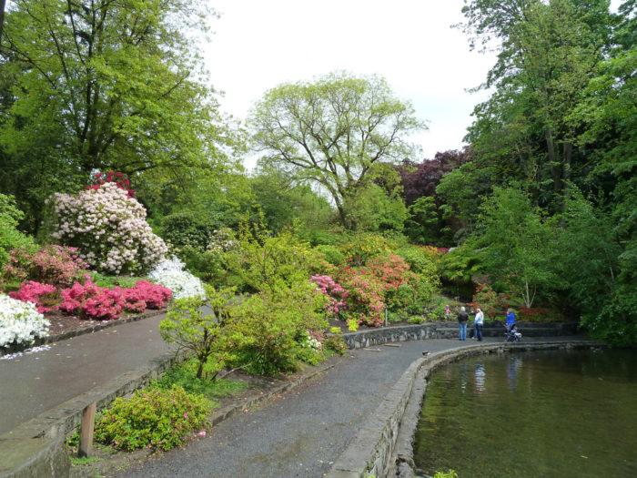 10. Crystal Springs Rhododendren Garden