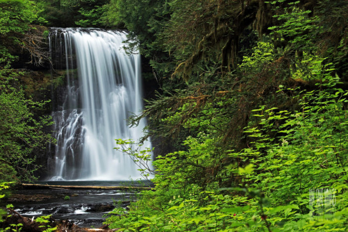 Upper North Falls, a beautiful 65-ft. waterfall surrounded by lush greenery...
