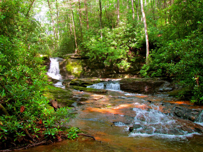 9. Raven Cliff Falls Trail—4.9 miles