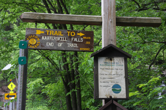 The adventure begins at the trailhead right off of the road, with a short half-mile hike.