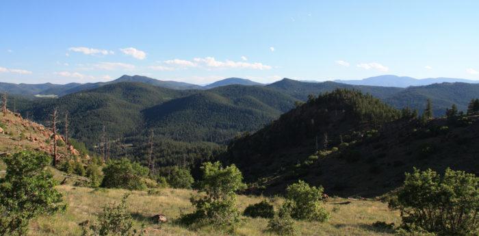 9. Mount Falcon Trails