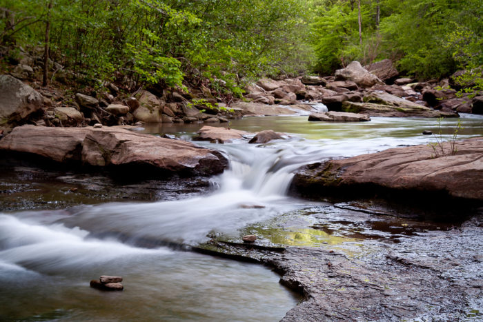 Even away from the falls, Haw Creek is totally gorgeous.