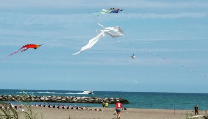 If a summer breeze glides off of the lake, run down the beach as you fly a kite.