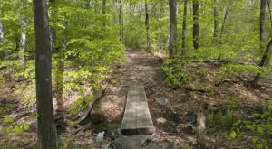 14 Magnificent Trails You Have To Hike In Pennsylvania Before You Die
