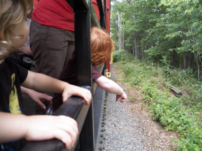 In one of the open cars, so you can feel the breeze and see the sights up close...