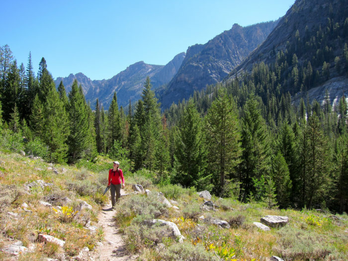 The steep trail to get here climbs over 1,600 feet and crosses multiple creeks, making this hike one not for the faint of heart.