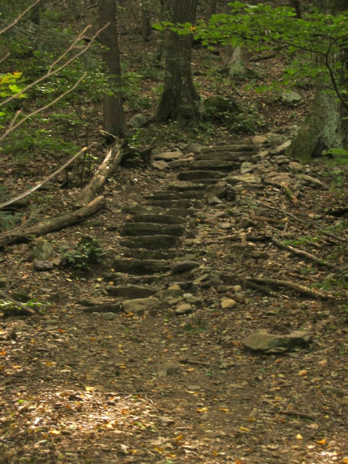 As you approach the summit of Mount Tom, you'll find steps carved into the mountainside to assist your journey.