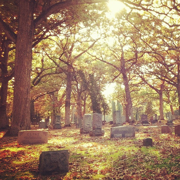 All in all, this place is more than just a dreary graveyard: it's a stunningly peaceful place to reflect and explore.