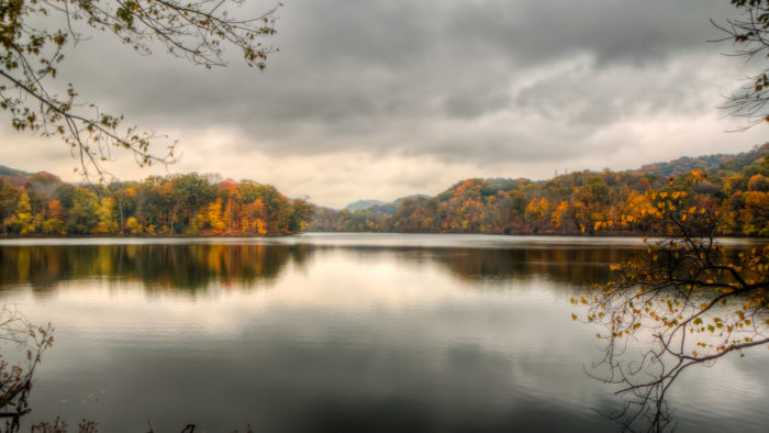 Radnor Lake - Brentwood