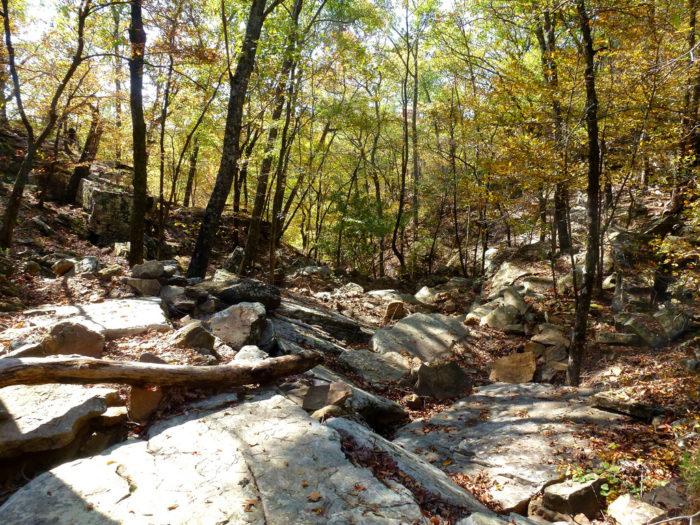 12. Butterfield Trail (Devil's Den State Park)