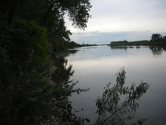 5. Dogwood Loop - Missouri River Natural Area - Mandan