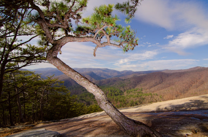 What To Do At Stone Mountain State Park In North Carolina