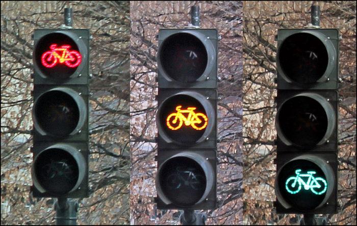 6. Bike like an idiot.