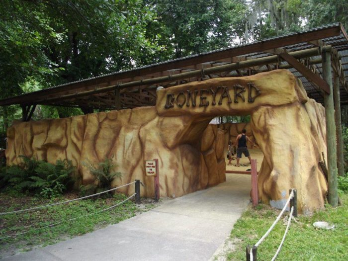 The Boneyard and Fossil Dig